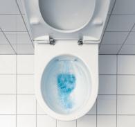 legrand plomberie des conseils pour vos wc. Black Bedroom Furniture Sets. Home Design Ideas